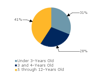 CCDF Average Monthly Percentage<br>of Children in Care By Age Group. Under 3-Years Old: 31%; 3 and 4-Years Old: 28%; 5 through 12-Years Old: 41%