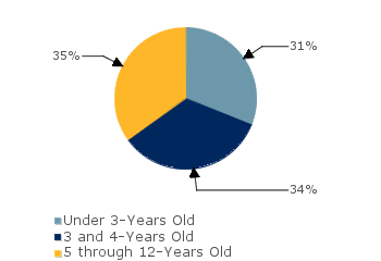 CCDF Average Monthly Percentage<br>of Children in Care By Age Group. Under 3-Years Old: 31%; 3 and 4-Years Old: 34%; 5 through 12-Years Old: 35%